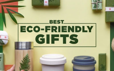 Best Eco-Friendly Gifts (2020 Guide)