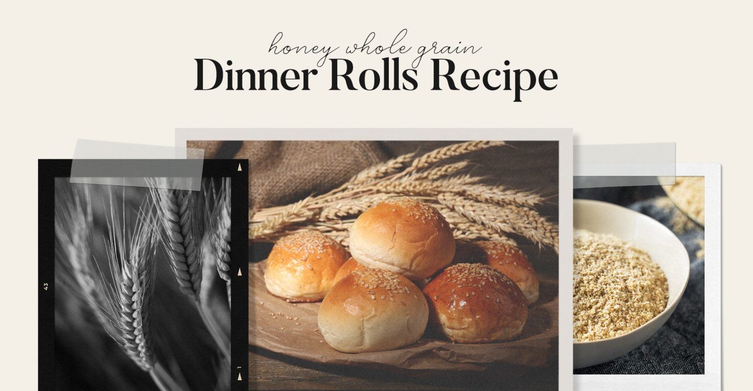 Honey Whole Grain Dinner Rolls