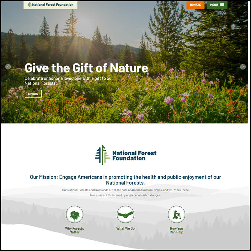 Support and donate to National Forest Foundation